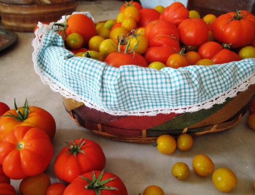 Come preparare la conserva di pomodoro fatta in casa