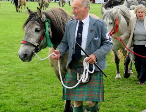 Benvenuti al Royal Highland Show: la fiera scozzese del bestiame e della gastronomia